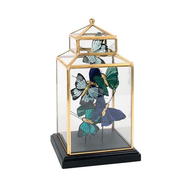 Butterflies In Garden House Glass Cloche 30cm